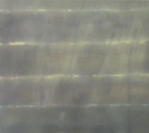 Gauze 2011 oil on linen 41 x 46 cms