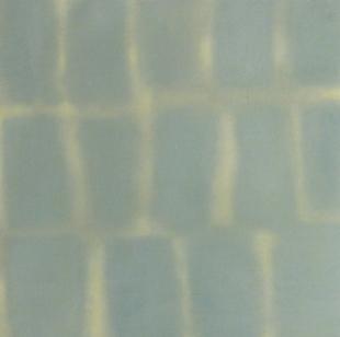 Blinds 2011 oil on linen 46 x 46 cms